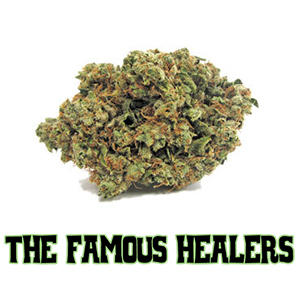 TFH-The Famous Healers