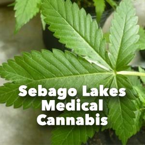 Sebago Lakes Medical Cannabis