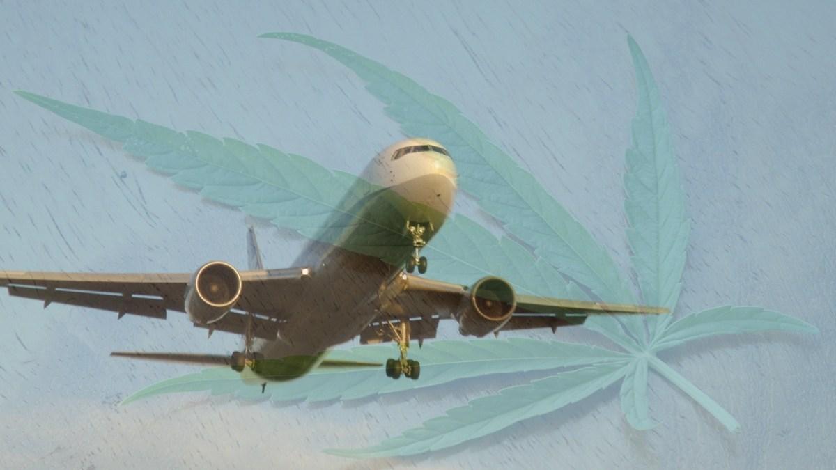 marijuana plane
