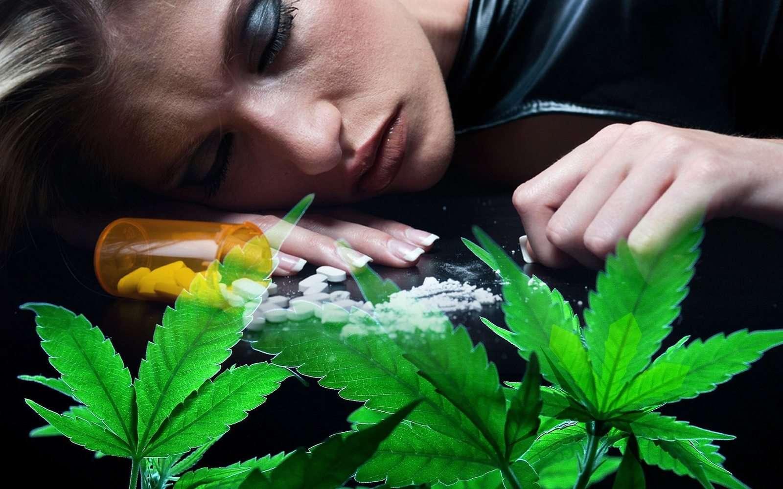 marijuana opioid crisis