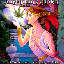 Amsterdam's Garden / San Jose, California / Dispensary Delivery
