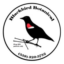 Blackbird Botanical / Fresno, California / Delivery