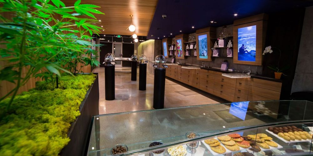How to Pick the Best Dispensary for Marijuana Medication
