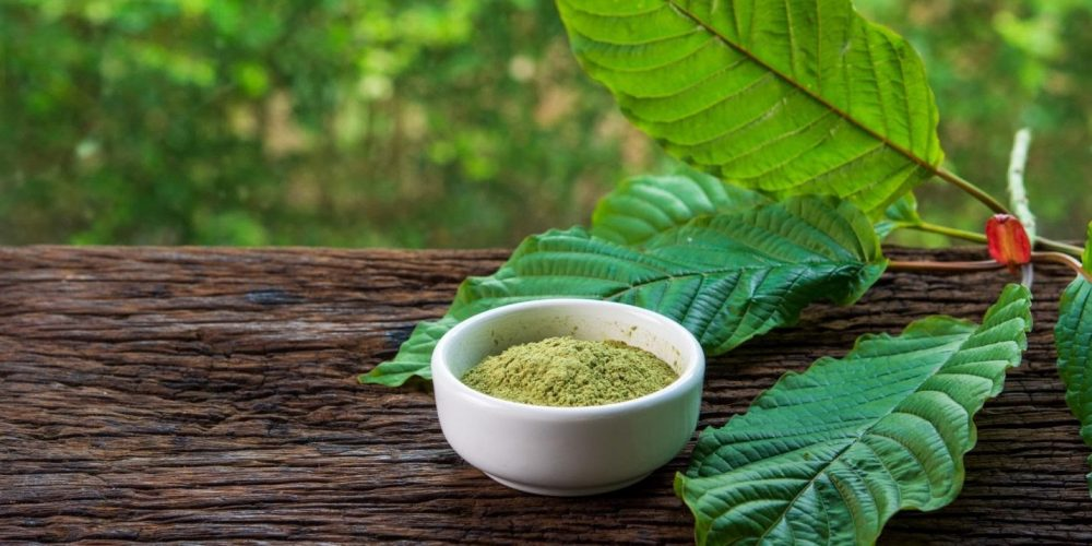 Looking at Weight Loss Benefits of Kratom