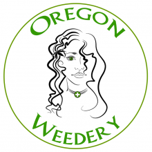 Oregon Weedery / Portland, Oregon / Dispensary